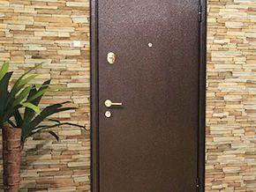 Двери c порошковым напылением